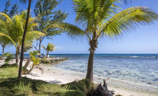 Coldwell Banker Ambergris Caye: Belize's Established Hollywood Persona, Coppola, Announces Island Hideaway